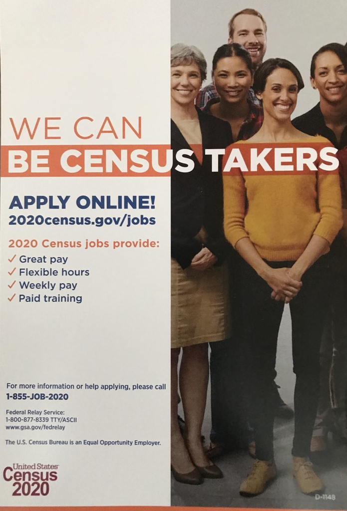 Census2020 Flyer